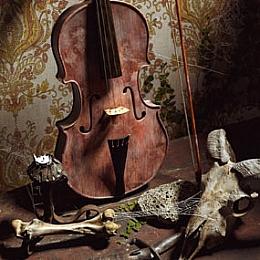 【二更小分队】写实小提琴C4D场景by安在南