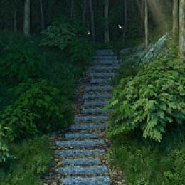 C4素材网-超真实林间阶梯