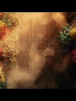 【二更小分队】octane 夕阳植物工程