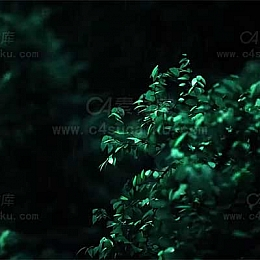 C4素材库-树林雨景C4D工程byM_麦秸