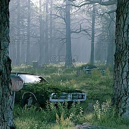 C4素材网-树林废车C4D场景