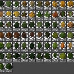 群资源分享【第二期】62个Octane树叶枫叶C4D模型材质预置创意场景森林素材