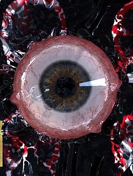 C4素材网-C4D工程-收缩包裹制作眼球