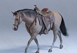 C4素材网-野马模型